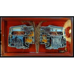 Engine Eyes